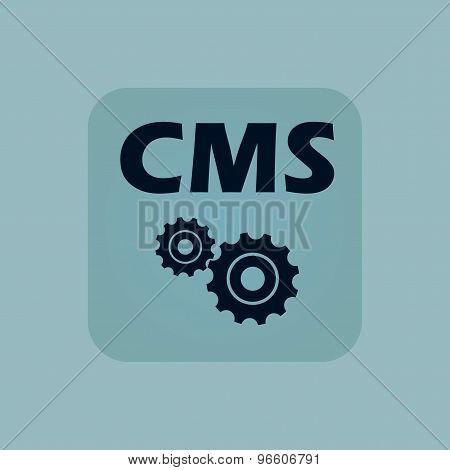 Pale blue CMS settings icon