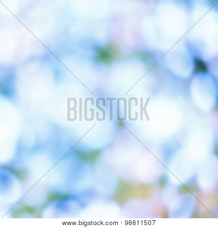 Artistic Soft Light Abstract Background  Blurred Magic Lights For Your Design.