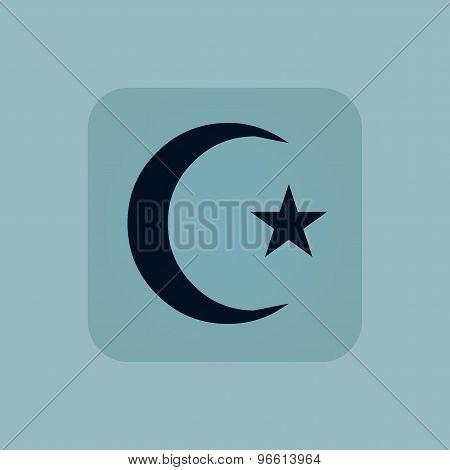 Pale blue Turkey symbol icon