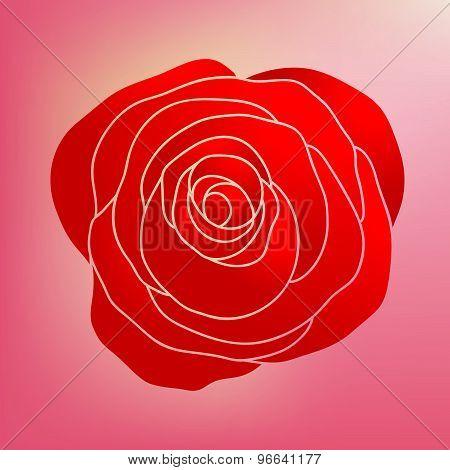 background, beautiful, beauty, bloom, blossom, decoration, decorative, design, element, floral, flower