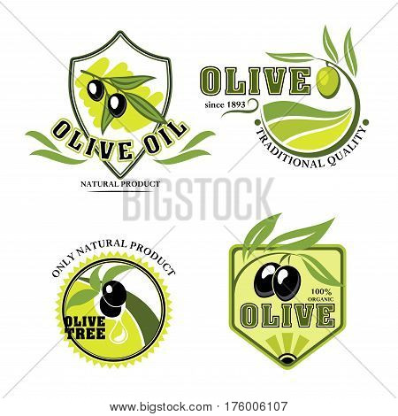 Olives icons for olive oil product or bottle label. Vector isolated emblems of green or black olive branches for industry company and farm store or organic vegetables market