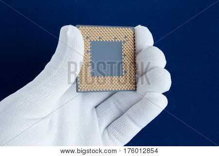 Hand in white glove holds the CPU. Closeup
