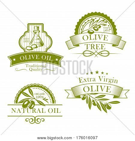 Olive oil bottle and product label templates. Vector icons of green olives branch and extra virgin natural organic oil for farm store or market, cooking and cosmetic or pharmaceutical industry