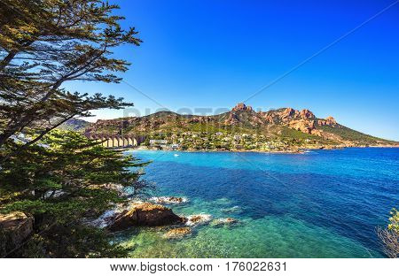 Esterel mediterranean red rocks coast beach tree and sea. French Riviera in Cote d Azur near Cannes Saint Raphael Provence France Europe.