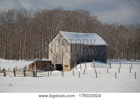 Snowy Old  Barn With Diagonal Boards And Barnyard
