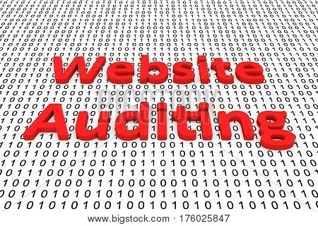 Website Auditing in the form of binary code, 3D illustration
