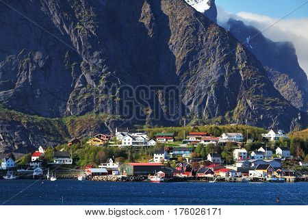 Norwegian fishing village with traditional red rorbu huts Reine Lofoten Islands Norway