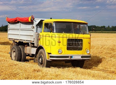Car Truck on a wheat field harvesting