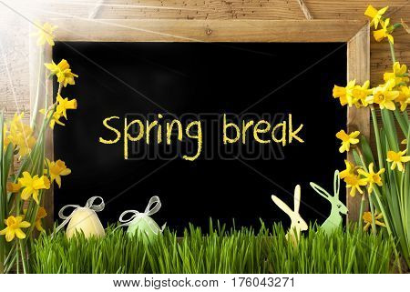 Blackboard With English Text Spring Break. Sunny Spring Flowers Nacissus Or Daffodil With Grass, Easter Egg And Bunny. Rustic Aged Wooden Background.