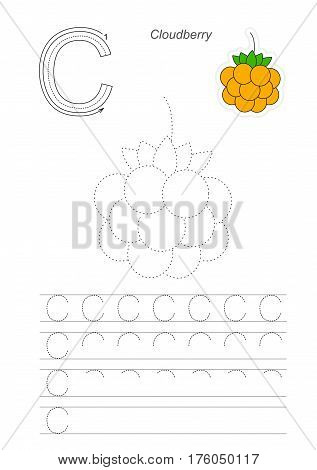 Vector illustrated worksheet to preschool children learn handwriting. Page to be traced for gaming and education with easy educational kid game level. Tracing worksheet for letter C. Cloudberry.