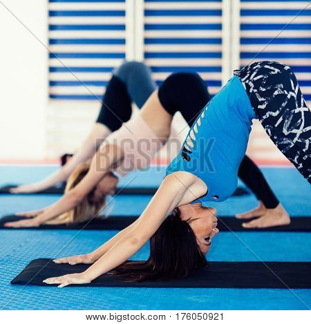 Yoga Class - group of women in downward dog position