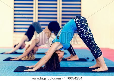 Group of women doing power y downward facing dog