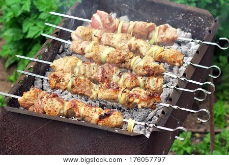 Pork Shish kebab on Fire. Appetizing fresh meat shish kebab prepared on a grill wood coal outdor