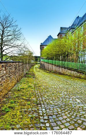 Belgian houses with gardens along a quiet street with hedges and trees. The old pavement covered with moss in St Hubert Belgium