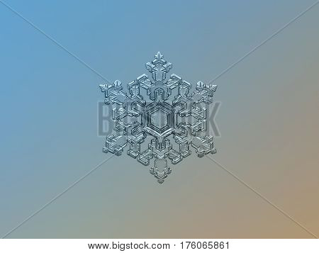 Macro photo of real snowflake: large snow crystal of stellar dendrite type with complex structure, fine symmetry and six ornate arms, glittering on bright blue - brown gradient background.