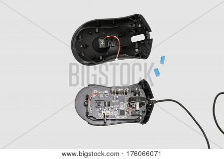 Dismantled computer mouse. Isolated on gray background.