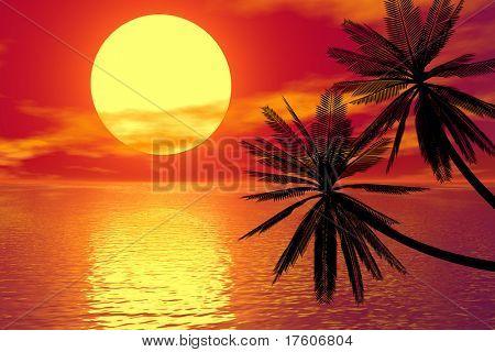 palme e tramonto rosso