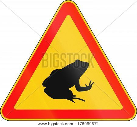 Belarusian Warning Road Sign - Toad Migration