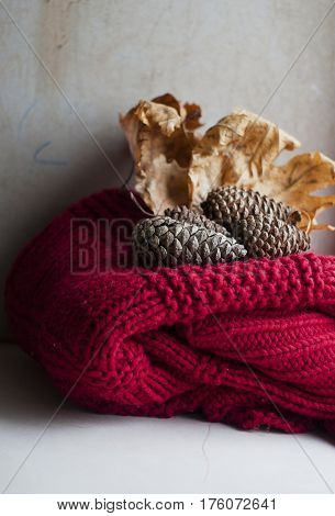 autumn leaves and pinecones on a red chunky knit