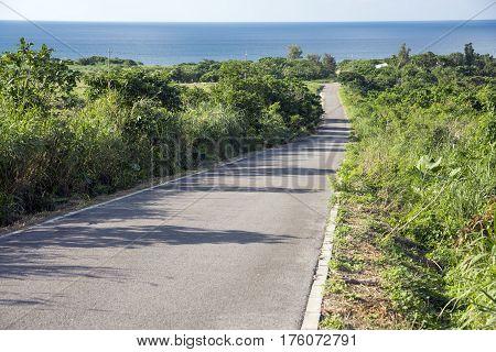 Down slope road through a bush toward sea in Ishigaki island