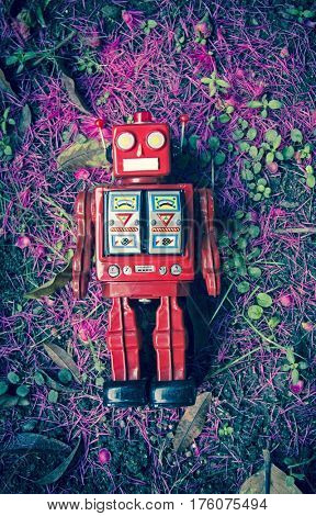 vintage red robot on the ground