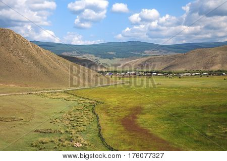 Countryside landscape green meadow hills shepherd with group of sheep village and blue sky with white clouds top view