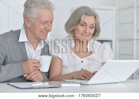 Portrait of an elderly couple with a laptop