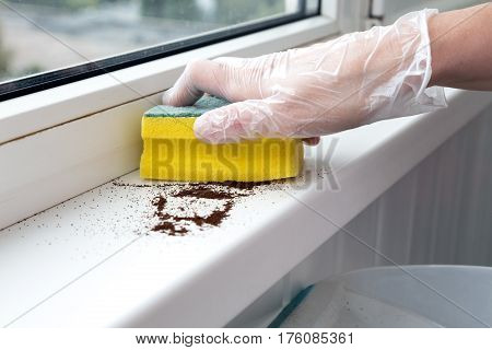 Office Cleaning Concept Person making Cleaning with yellow Brush and Shovel collecting some Garbage from Window sill
