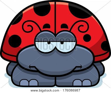 Bored Little Ladybug