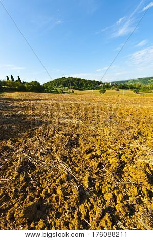 Plowed Hills of Tuscany in the Autumn