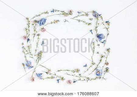 Flowers composition. Frame made of dried flowers on white background. Flat lay top view