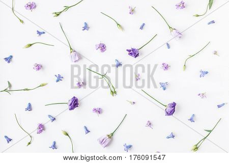 Flowers composition. Pattern made of various colorful flowers on white background. Flat lay top view