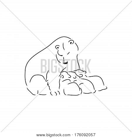 Polar bear and her cubs. Bear feeding young cubs. Drawing from the simple lines on white background vector