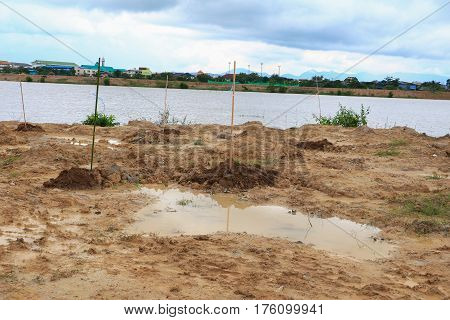 empty dug in the ground before afforestation action