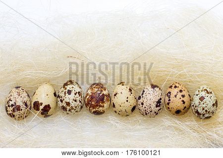Easter Quail Eggs In The Straw On A White Background.