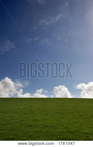 Blue Sky And Green Grass - Portrait