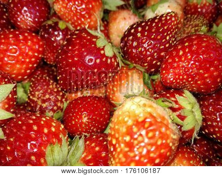 Sweet fruits Strawberry Yummy Strawberry fun Lovely fruits Lover of fruits Fruits on the morning