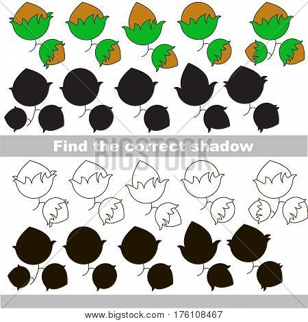 Hazelnuts set to find the correct shadow, the matching educational game to compare and connect objects and their true shadows, kid logic game with simple game level for preschool kids education.