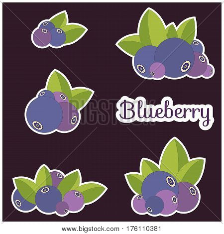 Set of blueberries and leaves isolated on brown. Vector illustration logo or tag of ripe blueberry and green leaf