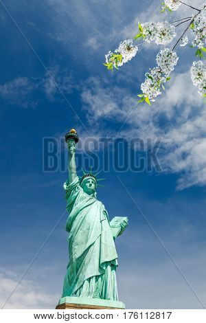 Statue of Liberty with blooming cherry on foreground, New York