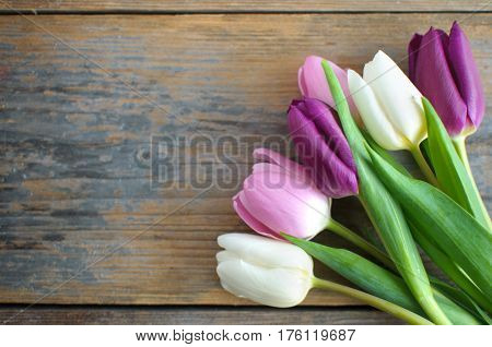 Spring tulips on a wooden background with space