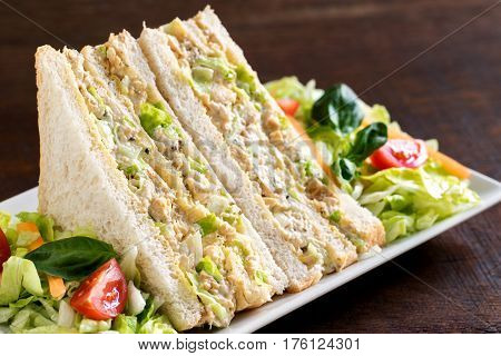 Macro close up white bread chicken and mayonnaise sandwich with green salad.