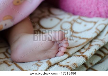 Close up of Innocent Feet Baby Soft Skin under  blanket. Soft Focus and Soft Tone.