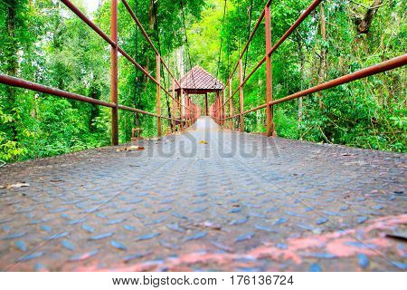 Suspension bridge walkway with tree in the forest public park.
