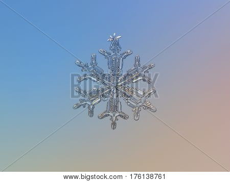 Macro photo of real snowflake: medium size snow crystal of stellar dendrite type with complex, elegant structure and six ornate arms, glittering on bright blue - pink gradient background.