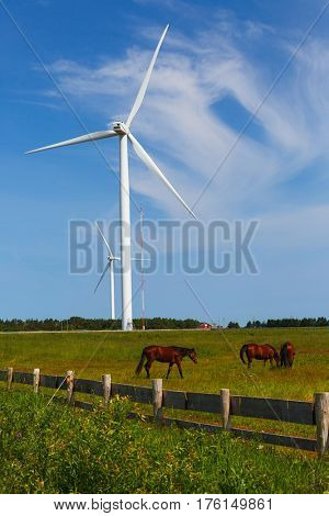 Wind turbines in a rural farm landscape.