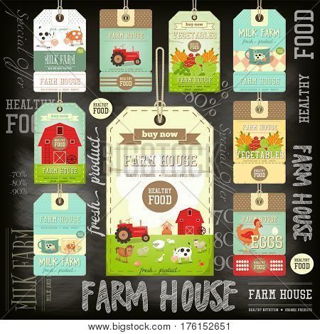 Set of Price Tag Label for Farm Product on Blackboard. Fresh Healthy Organic Food. Vector Illustration.