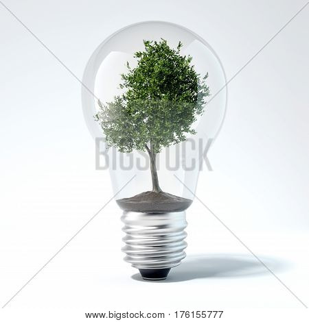 Green tree inside light bulb in bright studio. 3d rendering