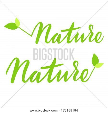 Nature hand drawn logo, lable. Vector illustration eps 10 for food and drink, restaurants, menu, bio markets and organic products. Brush lettering, calligraphy