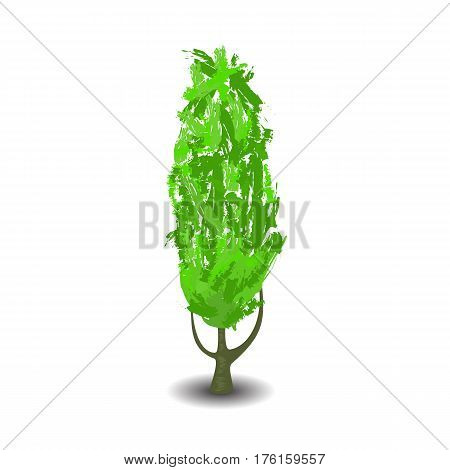 Green tree with brush textured crown vector illustration on white background. Handdrawn comic style tree with shadow. Summer tree with branches and leaf. Thin maple isolated. Forest element clipart